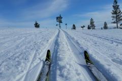 Fins en Zweeds Lapland (5)