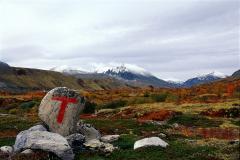 Fjellgebied (12)
