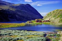Fjellgebied (8)