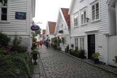 Fjordengebied Noorwegen (17)