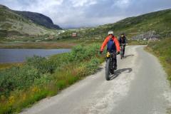 Fjordengebied Noorwegen (25)