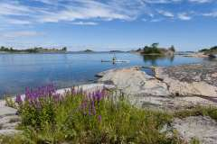 Stockholm-stedenreis-Norden-Trips-19
