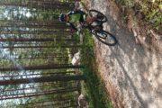 rondreis familie noorwegen fietsen