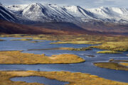 Reykjavik stedenreis Norden Trips